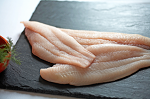 FROZEN IQF NC Albemarle Sound Catfish filets (1lb)   ON HAND NOW